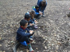 granton-primary-free-nature-school-forest-school-lambeth-20