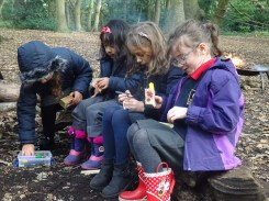 granton-primary-free-nature-school-forest-school-lambeth-8