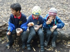 streatham-common-granton-primary-school-free-nature-school-forest-school-lambeth-10