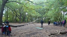 streatham-common-granton-primary-school-free-nature-school-forest-school-lambeth-14