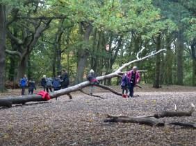 streatham-common-granton-primary-school-free-nature-school-forest-school-lambeth-2