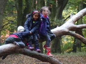 streatham-common-granton-primary-school-free-nature-school-forest-school-lambeth-4