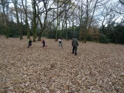 free-forest-school-activity-for-primary-school-children-on-streatham-common-lambeth-4