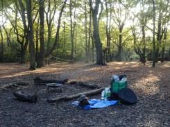 free-forest-school-activity-for-primary-school-streatham-common-lambeth-14