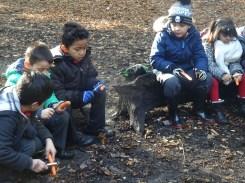 free-forest-school-activity-for-primary-school-streatham-common-lambeth-8
