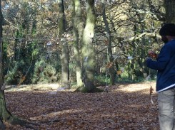 free-forest-school-activity-for-primary-school-students-streatham-common-lambeth-8