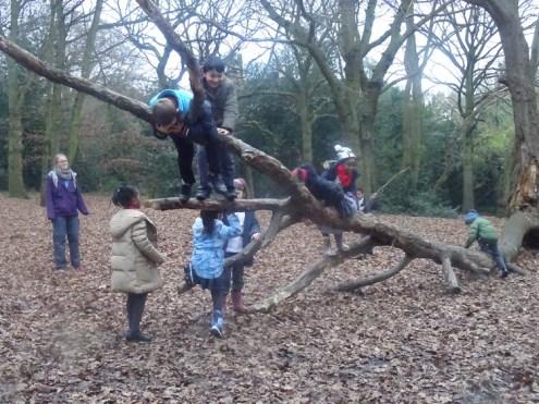 last-free-forest-school-activity-for-primary-school-children-on-streatham-common-lambeth-1