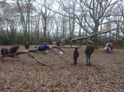 last-free-forest-school-activity-for-primary-school-children-on-streatham-common-lambeth-17