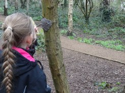 Forest school activity at eardley road sidings nature reserve Lambeth-6
