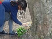 Granton Primary School forest school after school activity Lambeth-10