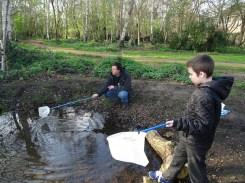 Granton Primary Year 5 students pond dipping Lambeth-2