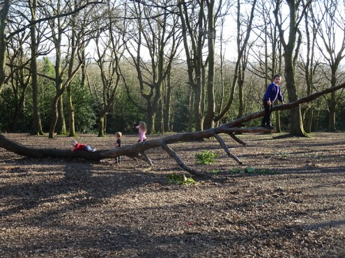 Second free forest school after school activity at Fern Lodge Estate Lambeth-1