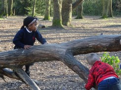 Second free forest school after school activity at Fern Lodge Estate Lambeth-6