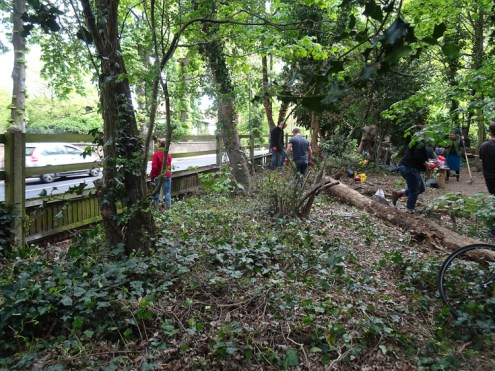 Free family nature activity Knights Hill Wood Lambeth London-1