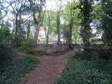 Nature Vibezzz dead hedge activity Knights Hill Wood Lambeth London-8
