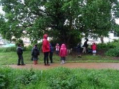 after school club pond dipping Lambeth London-9