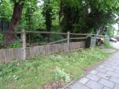 Family activity Knights Hill Wood Lambeth London-2