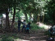 free family event Knights Hill Wood Lambeth London-19