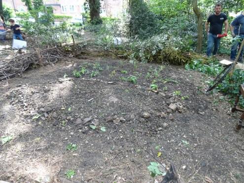 free family nature activity Knight Hill Wood Lambeth London-9