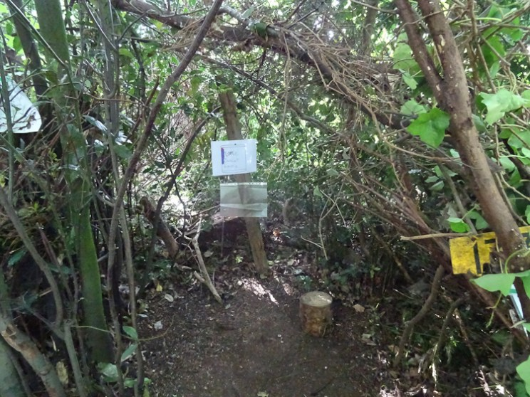 Free family nature activity Knights Hill Wood West Norwood Lambeth London-12