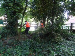 Free family nature activity Knights Hill Wood West Norwood Lambeth London-3
