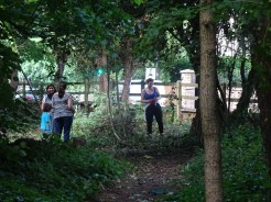 Free family nature activity Knights Hill Wood West Norwood Lambeth London-4