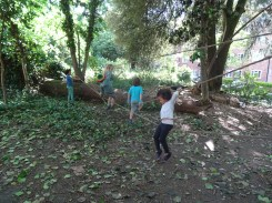Free family nature activity Knights Hill Wood West Norwood Lambeth London-6