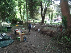 Free family nature activity Knights Hill Wood West Norwood Lambeth London-7
