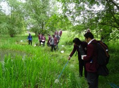 Pond dipping st Josephs College Norwood Park Lambeth London-3