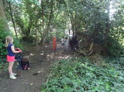 Free family nature Knights Hill Wood West Norwood Lambeth London-19