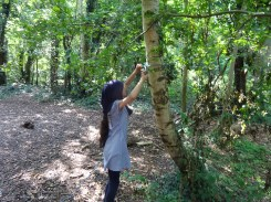 Free after school forest school club Streatham Lambeth London-3