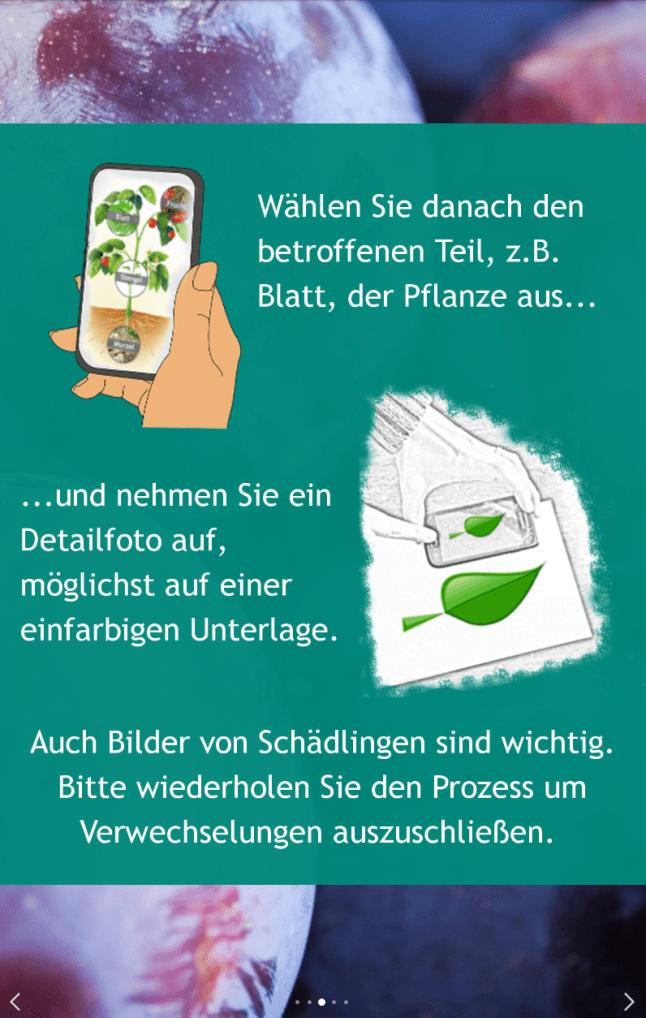 Android-App: GartenBank