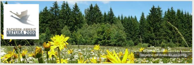 Quelle: Natura2000/Sachsen-Anhalt