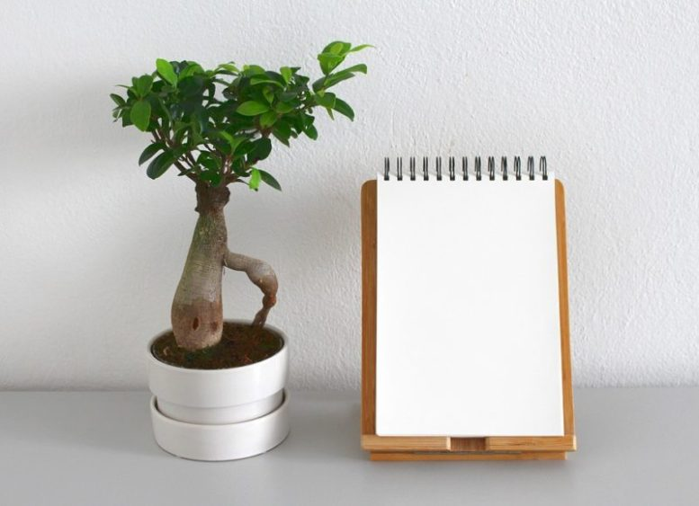 El minimalismo efectivo es un concepto derivado originalmente de la arquitectura y el diseño de interiores americanos promovido inicialmente por Graham Hill el arquitecto y creador del minimalismo. Aprende sobre el minimalismo y sus tácticas efectivas