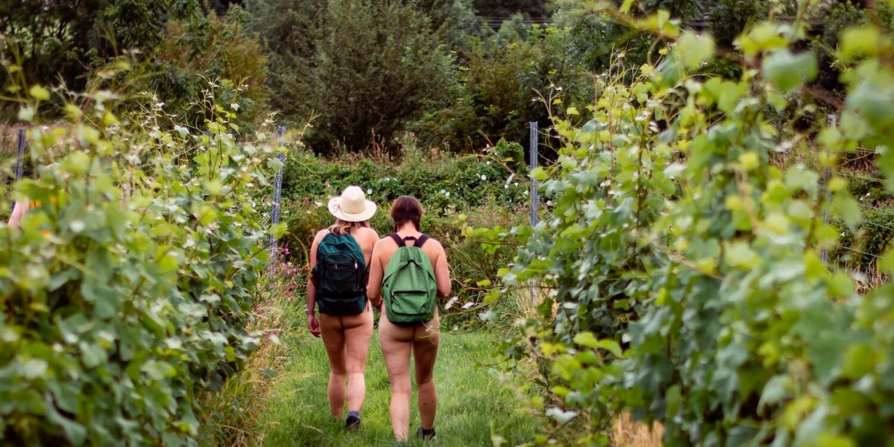 Tell us what you want from British Naturism in your area