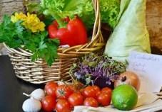 Fruits de Saison - Les techniques naturopathiques