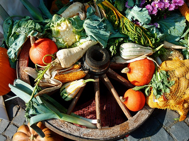 Légumes de saison_coaching courses alimentaires