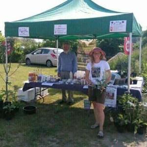 Naturplanteskolen på CPH Gardens i Ballerup @ Naturplanteskolen | Hedehusene | Danmark