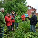 Norge-2016-5-450