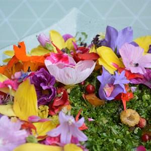 Spiselige blomster - brug i salater og kager mm. @ Naturplanteskolen | Hedehusene | Danmark