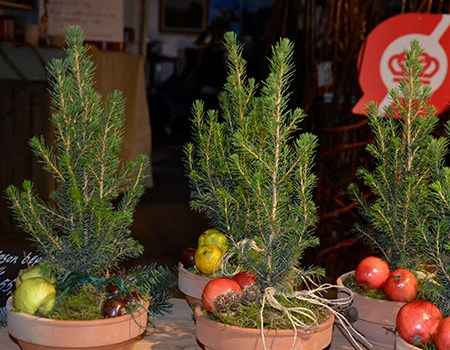Julegrantræsdekoration fra Naturplanteskolen