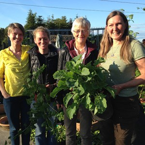 Høstmarked med mening @ Naturplanteskolen   Hedehusene   Danmark