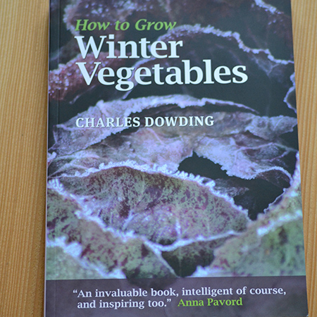 how-to-grow-winter-vegetables-450