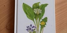 spiselige-vilde-planter-bog-450
