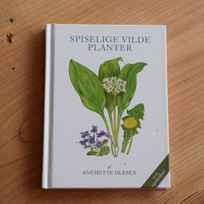 Spiselige vilde planter