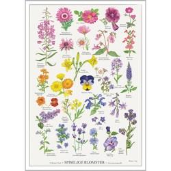 Plakat fra Koustrup- Spiselige blomster