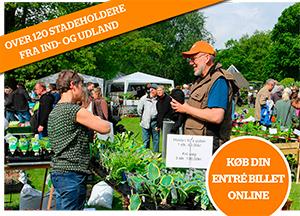 Plantemarked i Kolding @ Geografisk Have