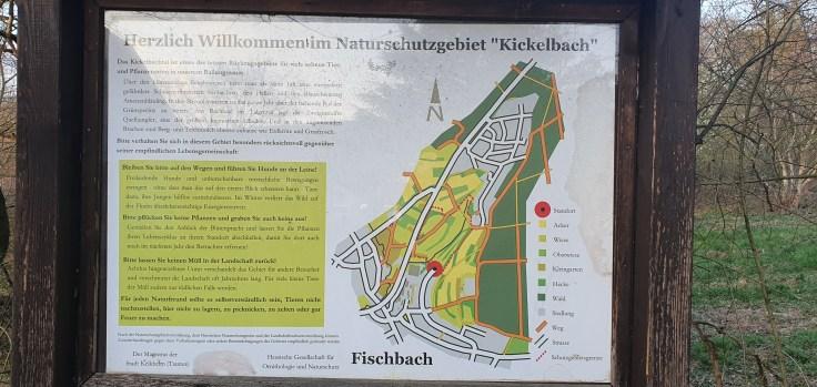 nsg kickelbach bei fischbach kelkheim naturschutzgebiet
