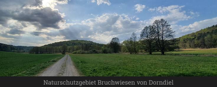 Naturschutzgebiet Bruchwiesen von Dorndiel