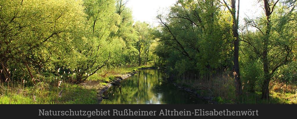 Naturschutzgebiet Rußheimer Altrhein-Elisabethenwört